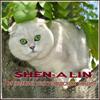 Питомник Shen-a lin